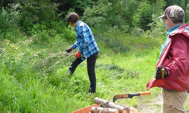 For the past couple of years, Fernie residents have helped mitigate wildfire by reducing fuels in overgrown areas in and around their homes.