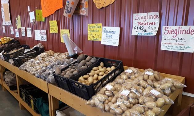 Display of potatoes at market stand.
