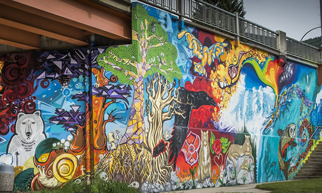 The Colours of Nelson Mural Project was created through a collaborative design process by 16 artists, ages 15-39.
