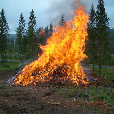 Slash pile burning in forest.