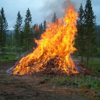 Slash pile burning in forest.