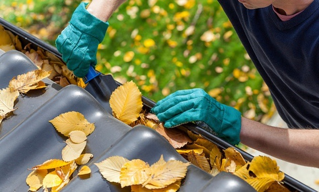 A man cleaning leaves out of the gutter.