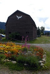 A rustic barn at the Doukhobor Museum in Castlegar