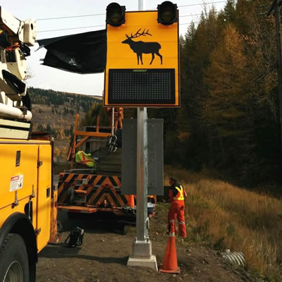 A highway sign with an elk on it that is part of a wildlife detection system in the Elk Valley, B.C.