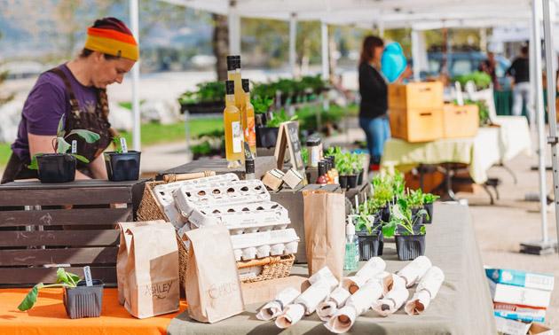Vendors at Revelstoke Food Initiative Market.