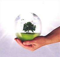 EK Green's Logo and photo of a tree