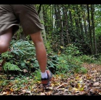 A man running on a forest trail.