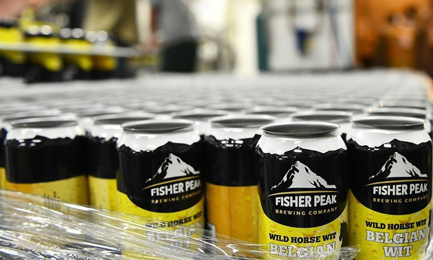 Picture of Fisher Creek Brewing Company beer in cans.