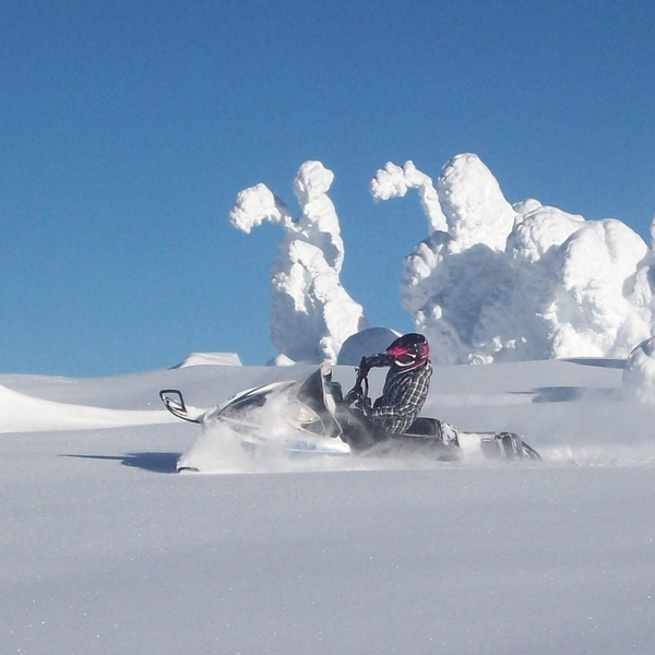 sledder in a snow drift under a sunny sky