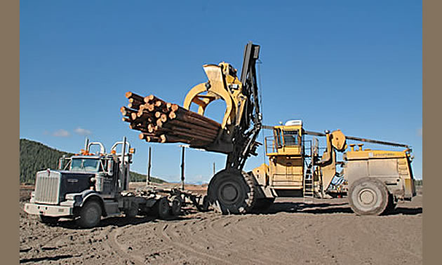 Forestry machinery at work