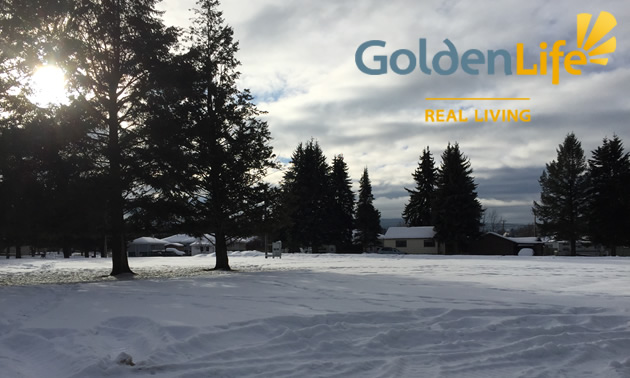 Picture of empty plot of land, with snow and pine trees and Golden Life logo.