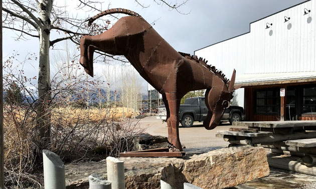 Large metal kicking horse sculpture in front of Kicking Horse Coffee building.