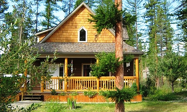 home in the forest