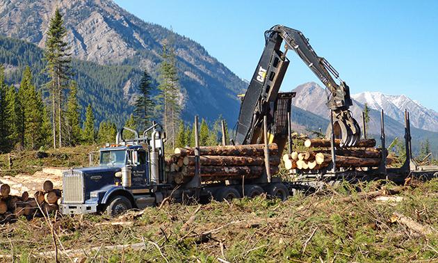 Logging truck loading logs.