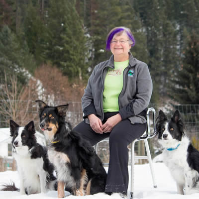 Jeanne Shaw with her three border collies.