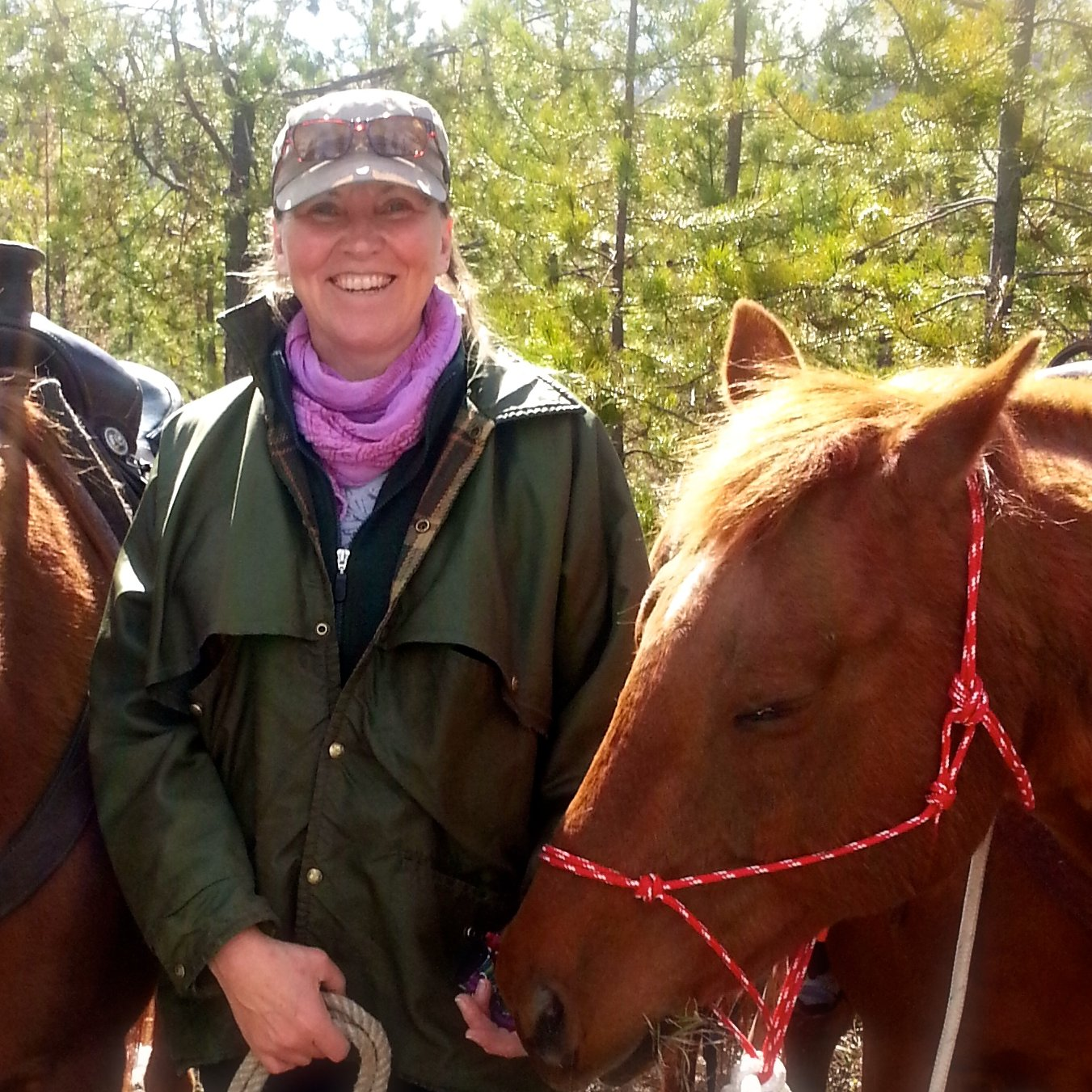 Martina Danzer with members of her healing herd.