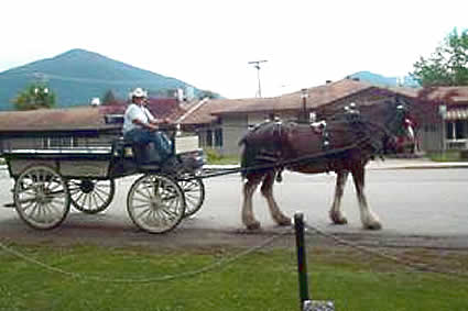 Rosemary Hughes in a carriage