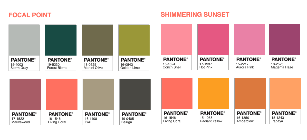 2019 S Pantone Color Of The Year Kootenay Business