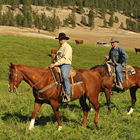 Photo of two cowboys riding red coloured horses across an open field that is dotted with red angus cows.
