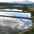 Photo of three treatment lagoons near a city.