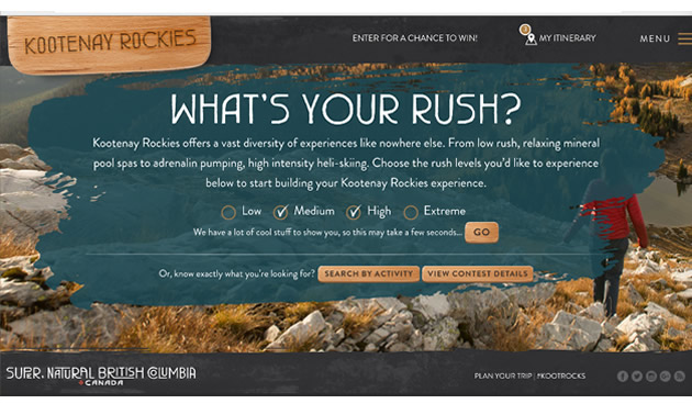 Graphic of 'What's your rush?' ad campaign.