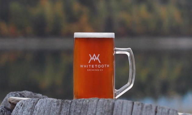 Picture of Golden's Whitetooth Brewing Company beer.